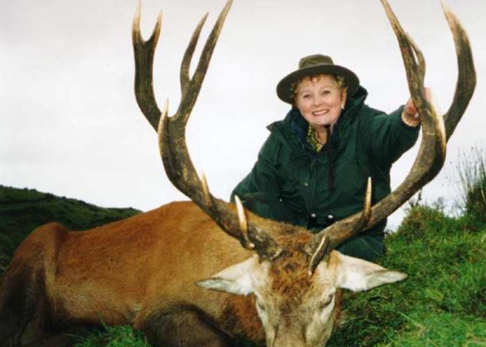 Red Stag 2004 - 297 sci