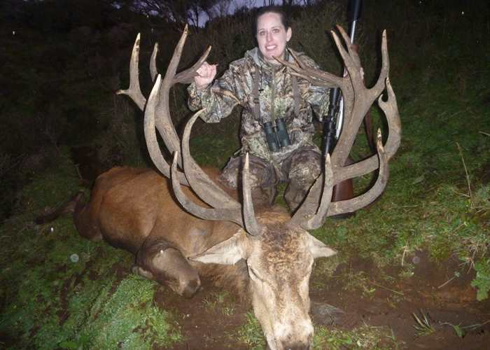 370inch Redstag